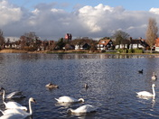 Thorpeness mere. Suffolk scenes.