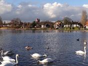 Thorpeness mere. Suffolk scenes.