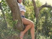 Photo challenge  - Trees captured at Braunton Burrows In Norrh Devon