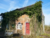 IVY CLAD OLD COTTAGE