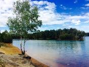 Summer..beautiful bawsey park