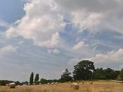 Playford Hay Bales