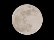 Look Up: Moon
