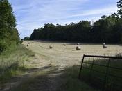 Farming (Hay Harvest)