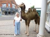 exmouth town shopping center