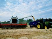 A torrent of barley.