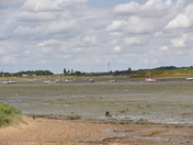 RIVER ORWELL - TIDE OUT
