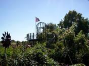 Rose Garden...