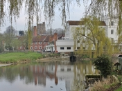 Enjoy Sudbury More - Mill and Water Meadow