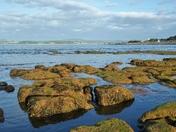 Maer Rocks at Sunrise, Exmouth