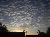 Warm day dawns over Harleston