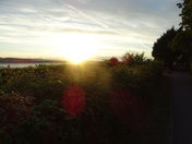 Sunset over the Exe Estuary, from near Lower Halsdon Farm, by footpath
