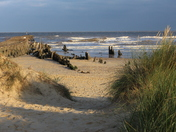 Suffolk Landscapes - Walberswick
