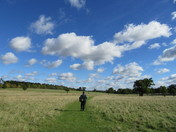 Suffolk Landscapes - Helmingham Hall