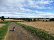 Clopton Green Farm landscape. (photo challenge)