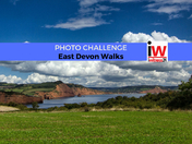 📸 PHOTO CHALLENGE: East Devon Walks 📸