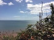 Photo Challenge - East Devon Walks