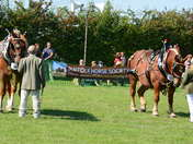 Suffolk Horse Spectacular & Country Show 2018