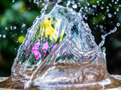 Photo challenge water