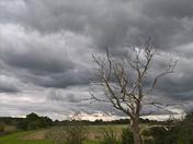 Dramatic sky ovet Martlesham