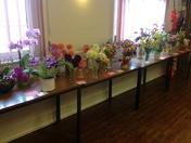 Kersey flower show