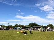 The Falconry & Countryside Fair Stonham Barns 2018