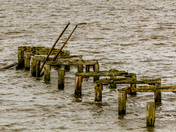 Old Jetty remains on the Wash at Snettisham