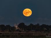 Harvest moon rise over Thurne