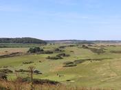 View from Skelding.