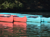 Fairlop Waters turn red and blue