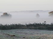 Ludham frosty morning
