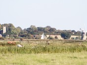 View over marsh from St Benets Abbey
