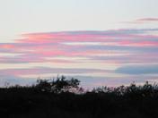 evening over  Raveningham