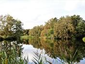 Autumn at Pensthorpe