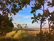 coastal footpath Hemley