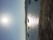Exe Estuary on an autumn afternoon