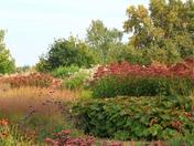 Perspectives- gardens