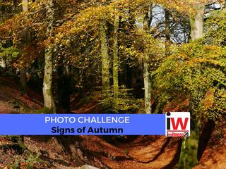 📸 PHOTO CHALLENGE: Signs of Autumn 📸