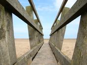 Perspective: Bridge