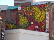 "NORWICH  STREET ARTWORK "" THE DRAGON """
