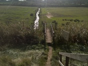 Stepping out at Martlesham creek