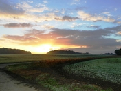 October sunrise over the farmland.