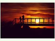 Birdwatchers silhouetted against a Fenland sunset.