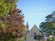 Autumn colours in Aldborough Hatch