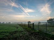 In a field near Blofield