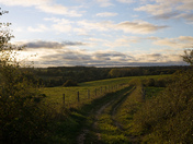 Autumn Late afternoon Stoke by Nayland