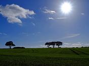 Sunny Suffolk