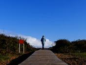 Felixstowe walk