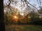 Perfect Autumn Day