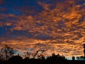 """'Red sky in the morning, shepherds' warning"""" say the old adage."""
